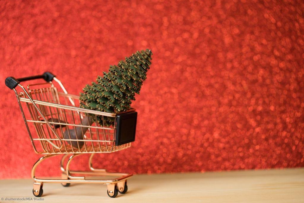 Single Tipps für Weihnachten am Bauernhof