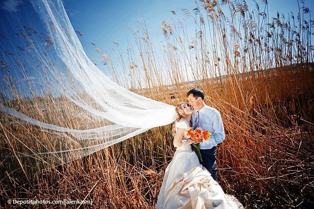 Liebe im Kuhstall: Wenn Landwirte heiraten
