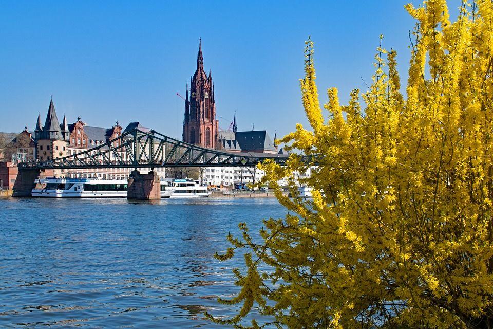 Sie sucht ihn in Frankfurt am Main