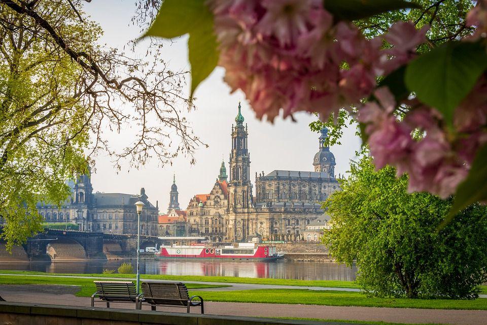Sie sucht ihn in Dresden