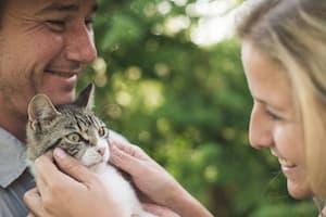 Paar mit Katze
